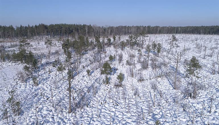 Ujęcia z drona na sprzedaż - łąki i bagna podczas zimy