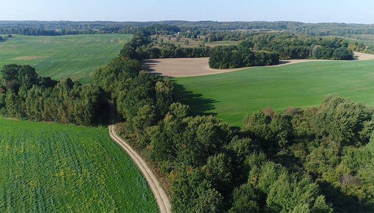 Ujęcia z lotu ptaka na sprzedaż - Lasy, pola i łąki