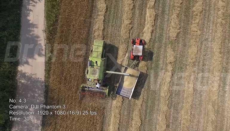 Ujęcia z drona podczas żniw - koszenie zboża kombajnem - część 1